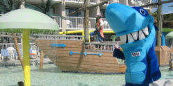 Salty the Shark at the Shipwreck Pool