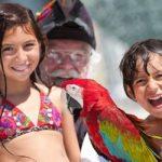 Kids Activities Landmark Resort